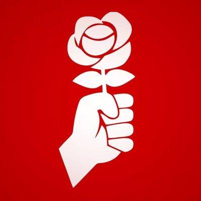 Les Jeunesses socialistes du Valais romand dans la cour des grands !